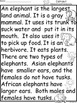 A+ Elephant Comprehension:Differentiated Instruction For G