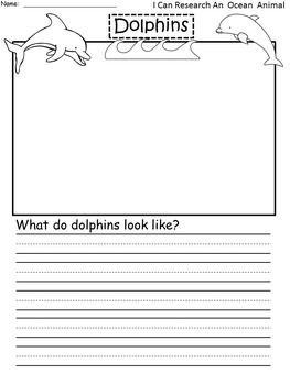 A+ FREEBIE..800 FOLLOWERS CELEBRATION!  I Can Research Dolphins Writing Paper