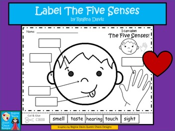 A+ Five Senses Labels