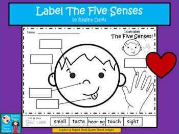 A+ Five Senses Labels