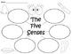 A+  Five Senses... Three Graphic Organizers
