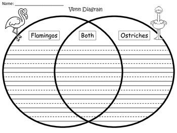 A+ Flamingos & Ostriches Venn Diagram...Compare and Contrast