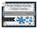 A Flurry of Multiple Meaning Words - A Winter Activity
