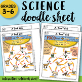 A Food Web - Doodle Notes Sheet - SO EASY to Use! PPT Included!