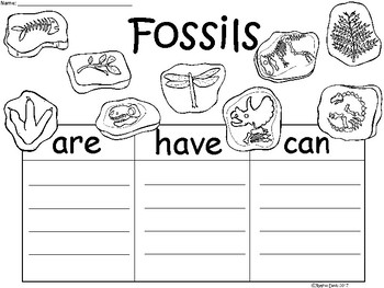 A+ Fossils...Three Graphic Organizers