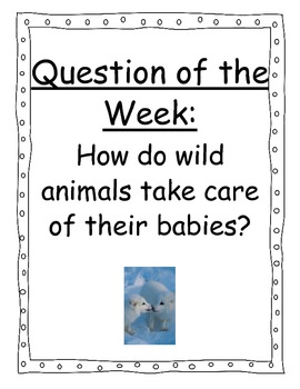 A Fox and a Kit Focus Wall Posters 1st Grade Reading Street CC 2013
