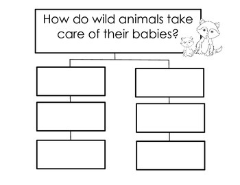 A Fox and a Kit Graphic Organizers and Writing Templates (Reading Street 1.4)