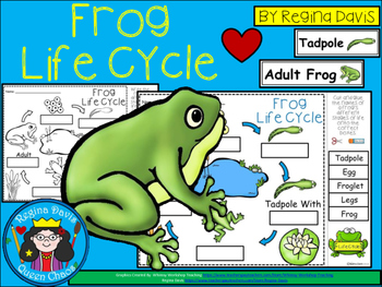 A+ Frog Life Cycle Labeling & Word Wall