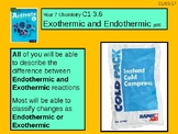 "A Grade 6 C1 3.6 ""Endothermic and Exothermic Reactions"" lesson."