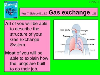"""A Grade 6 lesson on  """"Gas Exchange"""""""