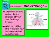 "A Grade 6 lesson on  ""Gas Exchange"""