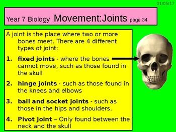 """A Grade 6 lesson on  """"Movement and Joints""""."""