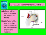 "A Grade 6 lesson on  ""Movement and Joints""."