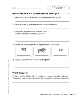 A Grasshopper's Life Cycle (Lexile 650)