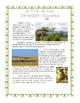 A Grassland Habitat Research Activity- A Trip to Serengeti