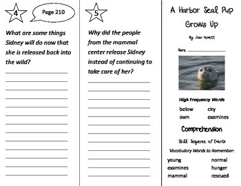 A Harbor Seal Pup Grows Up Trifold - Treasures 2nd Grade U