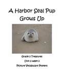 A Harbor Seal Pup Grows Up Vocabulary Posters