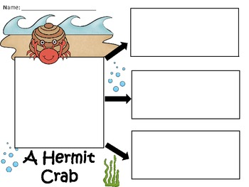 A+  Hermit Crab ... Three Graphic Organizers
