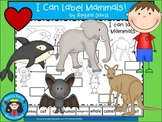A+ I Can Label Mammals!
