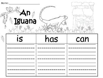 A+  Iguana... Three Graphic Organizers