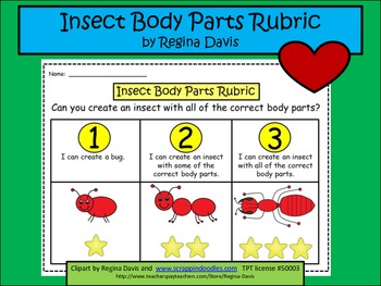A+  Insect Body Parts: Rubric