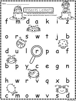 A+ Insects CVC Words And Letter Reading Practice