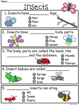 A+ Insects Comprehension: Differentiated Instruction For Guided Reading