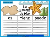 A+ La Estrella de Mar...Three Spanish Graphic Organizers