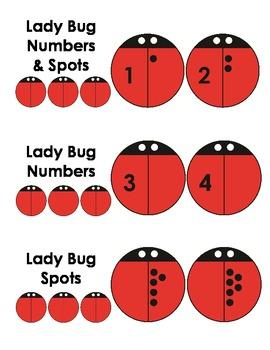 photograph relating to Ladybug Printable titled A+ Ladybug Printable Clipart - Early Math Software