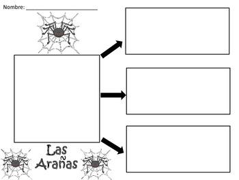 A+ Las Aranas: Spanish Graphic Organizers
