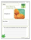 A Leaf Can Be... 1st Grade Common Core Activity Sheets