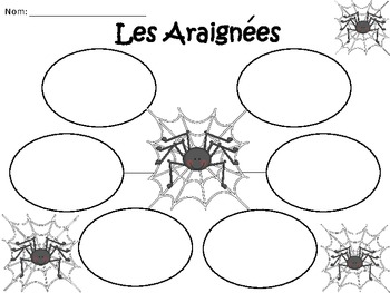 A+ Les Araignees: French Graphic Organizers
