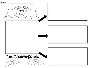 A+ Les Chauve-Souris: French Graphic Organizers