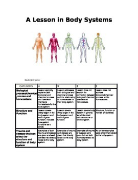 A Lesson in Body Systems
