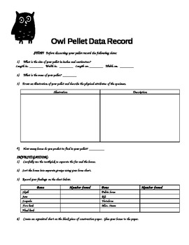 A Lesson with Owl Pellets