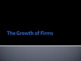 A Level GCSE IGCSE Economics IB Business Growth Mergers PPTs