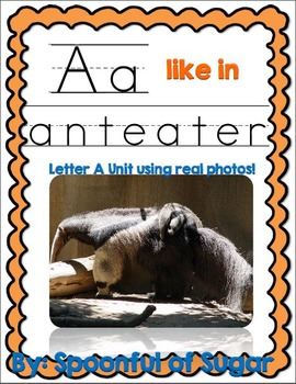 A Like in Anteater (A Letter A Unit Using Real Photos!)