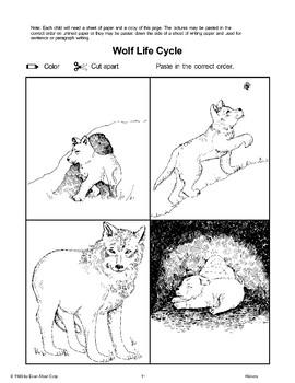 A Litter of Pups