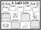 A Log's Life by Wendy Pfeffer Main Idea Organizer