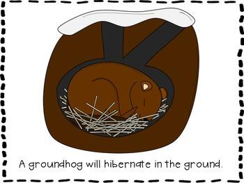 A Long Winter Nap: A Hibernation Unit