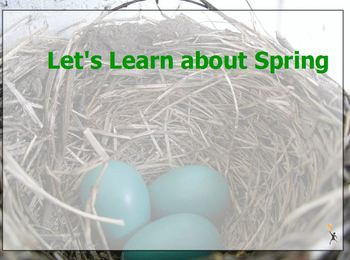 A Look at Spring flipchart