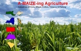 A-MAIZE-ing Agriculture - Teaching SS through Classroom Ma