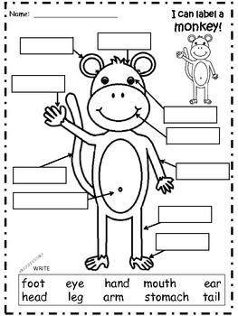 A+ Monkey  Labels