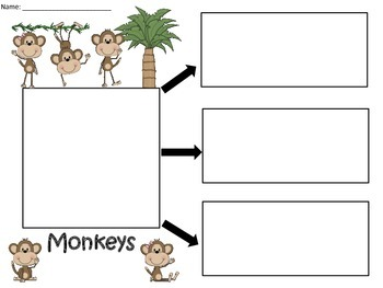 A+ Monkeys: Graphic Organizers
