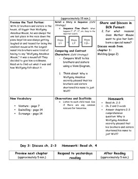 A Mouse Called Wolf Guided Reading Unit