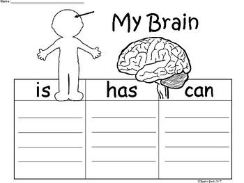 A+ My Brain ...Three Graphic Organizers