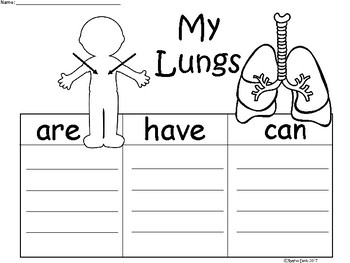 A+ My Lungs ...Three Graphic Organizers