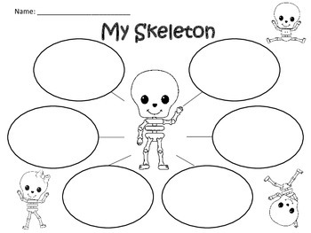 A+ My Skeleton: Graphic Organizers