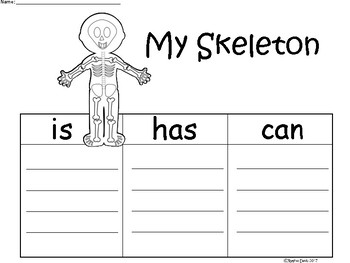 A+ My Skeleton ...Three Graphic Organizers
