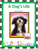 A Novel Study for A Dog's Life